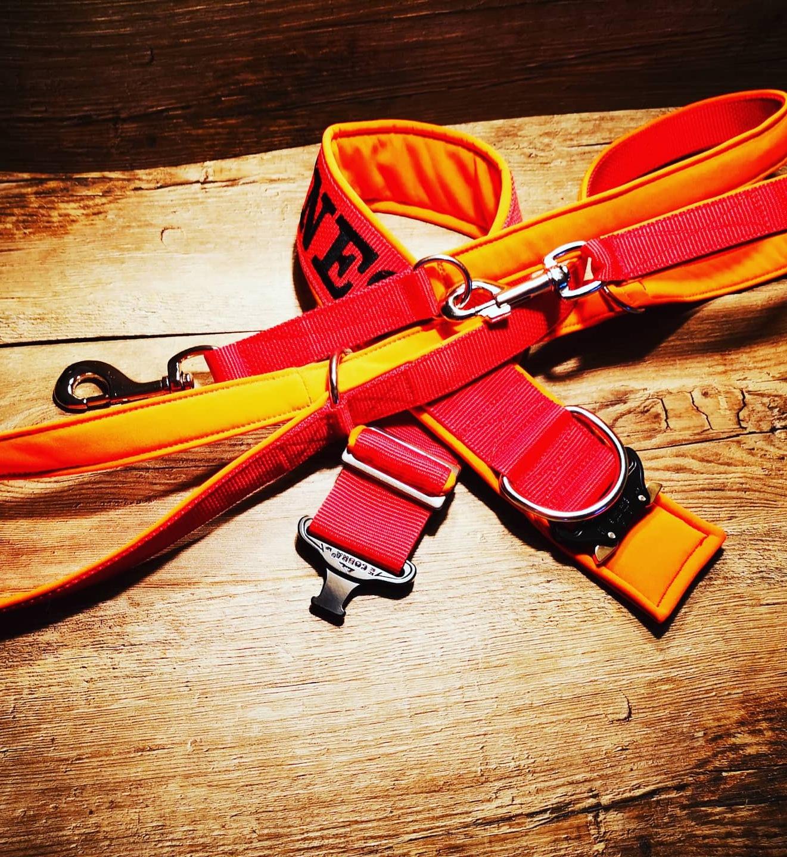 Cobra Halsband rot/orange mit passender Leine
