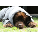Hundebademantel mit Beinen Dryup Body Zip.Fit BIG
