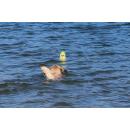 Wasserspielzeug DOOG Seals Blubber | Flipper