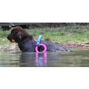 Wasserarbeitsgeschirr Hund | Geschirr Wasserarbeit